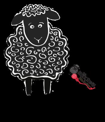 sheep_transp_laptop_contact-crop